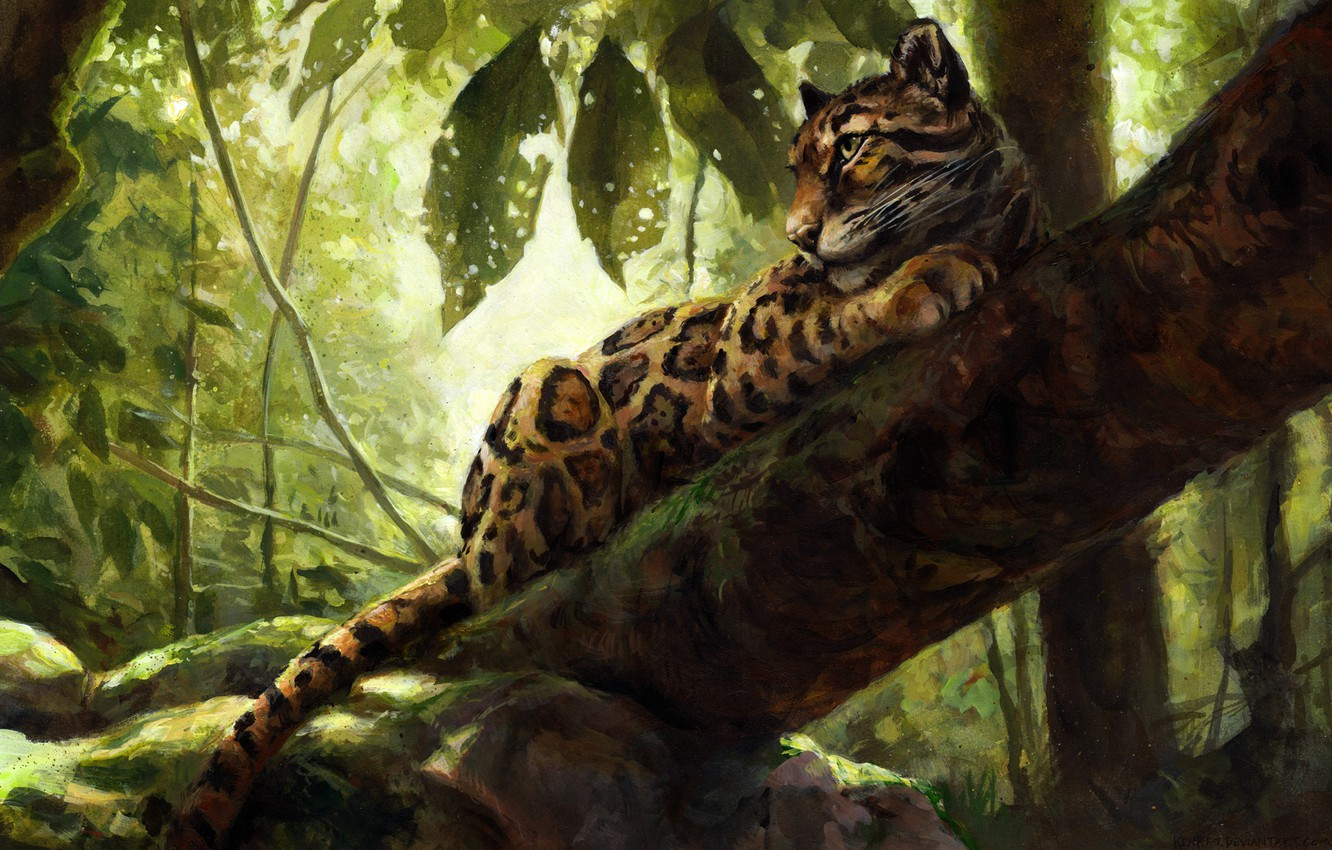 Photo wallpaper nature, tree, leopard, by kenket