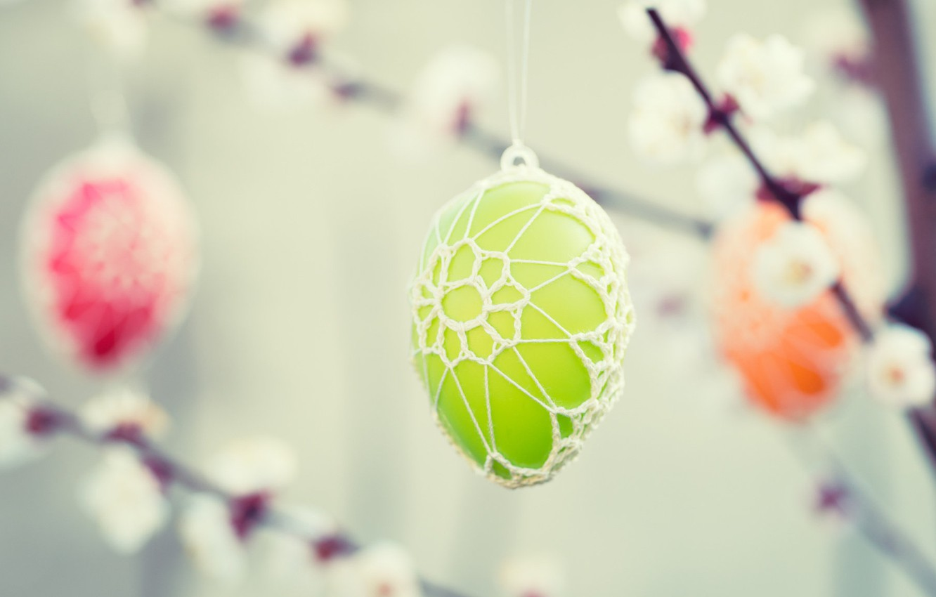 Photo wallpaper flowers, branches, tree, holiday, eggs, Easter, eggs