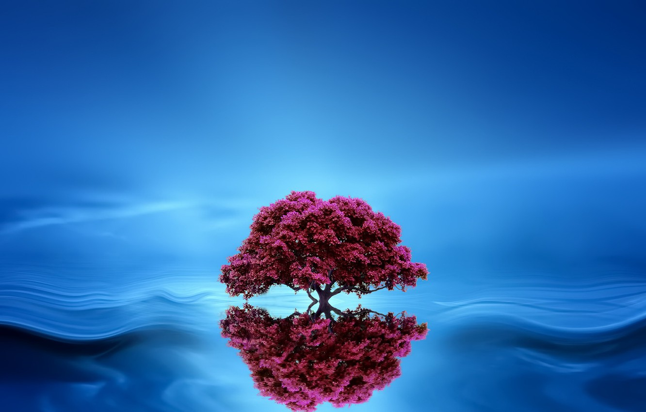 Photo wallpaper background, tree, wave