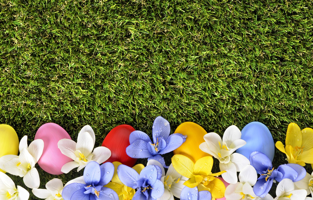 Photo wallpaper grass, flowers, spring, Easter, flowers, spring, Easter, eggs, decoration, green grass, Happy, the painted eggs