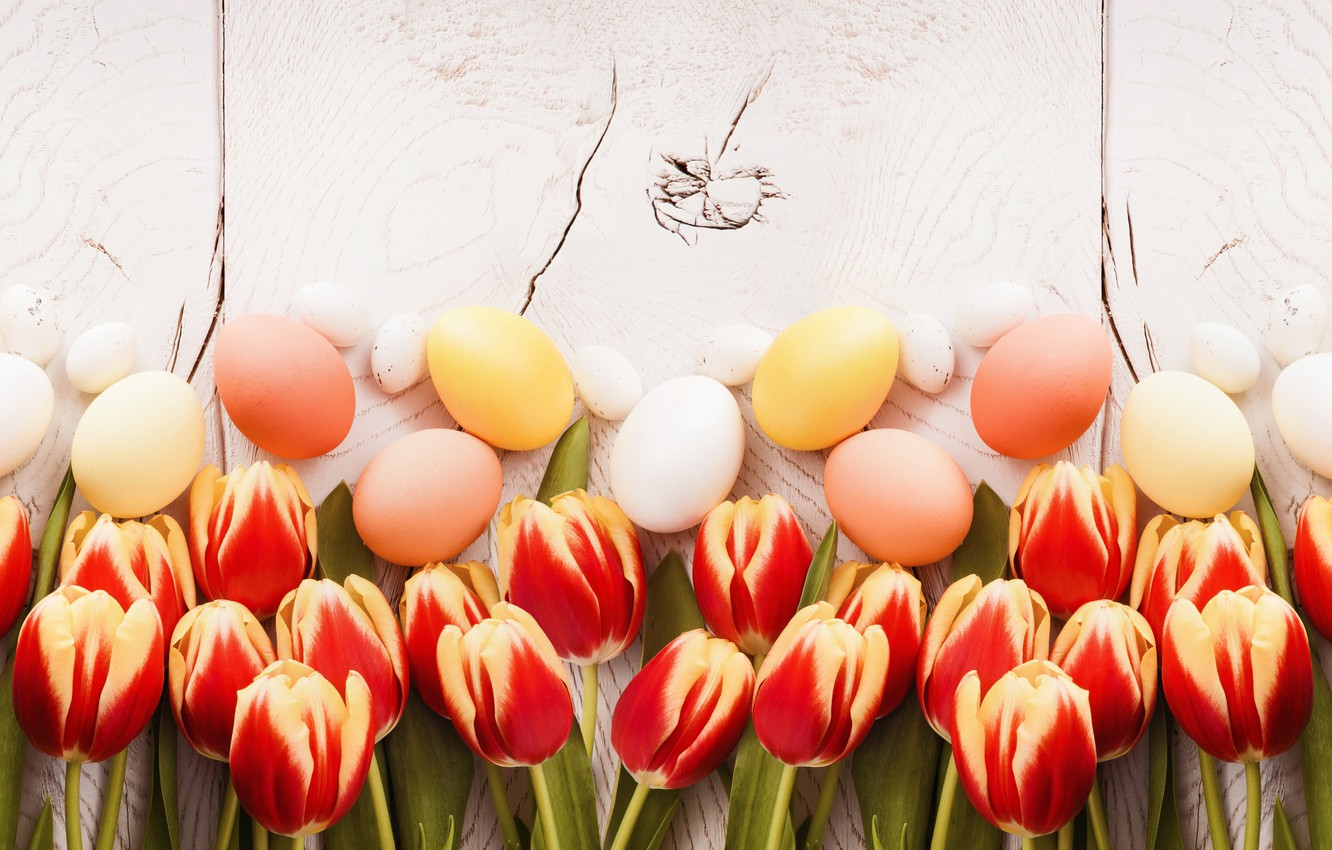 Photo wallpaper Easter, tulips, wood, tulips, spring, Easter, eggs, decoration, Happy, tender
