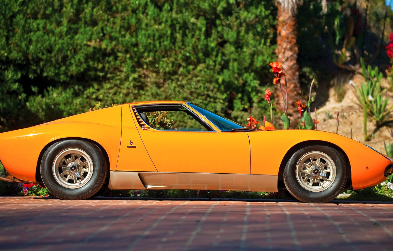 Wallpaper Auto Lamborghini Machine Orange Eyelashes 1971