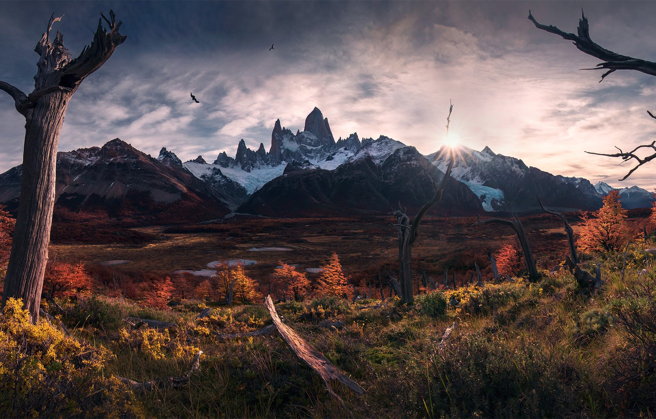 Photo wallpaper autumn, the sun, light, birds, South America, Patagonia, the Andes mountains