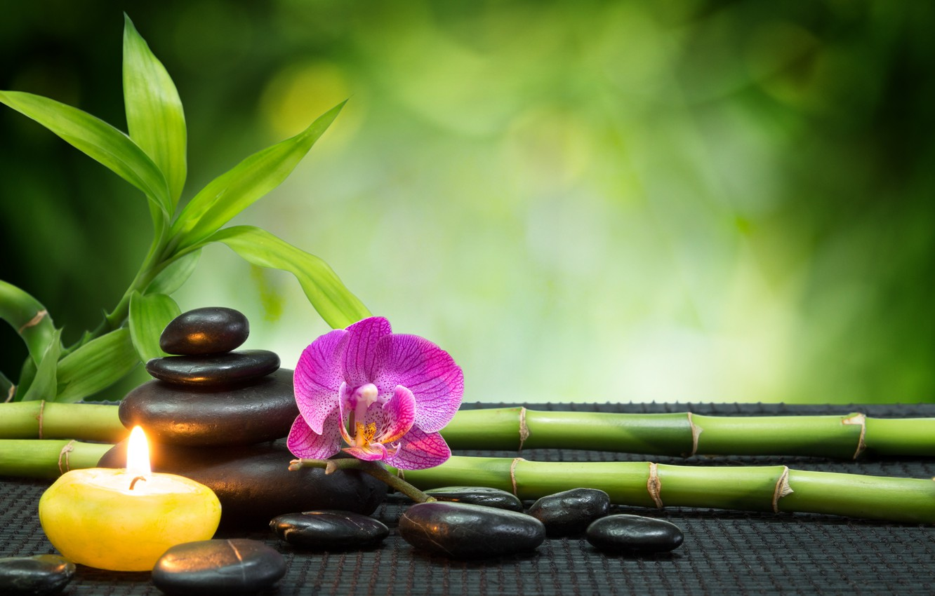 Photo wallpaper flowers, bamboo, orchids, Spa stone