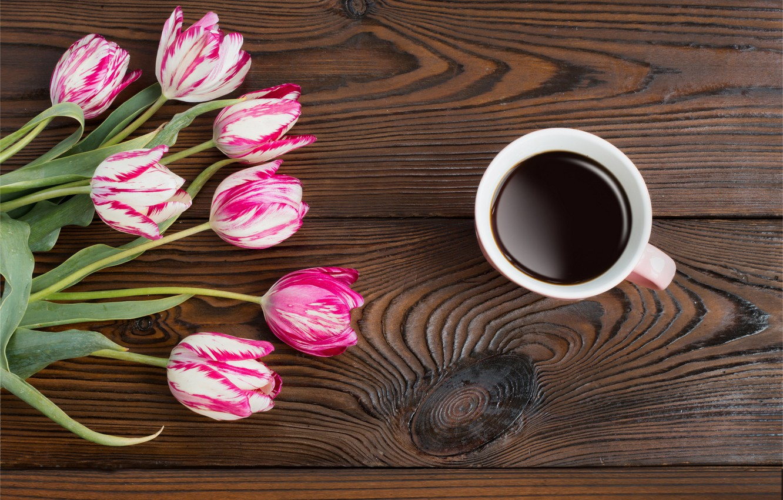 Photo wallpaper flowers, coffee, tulips