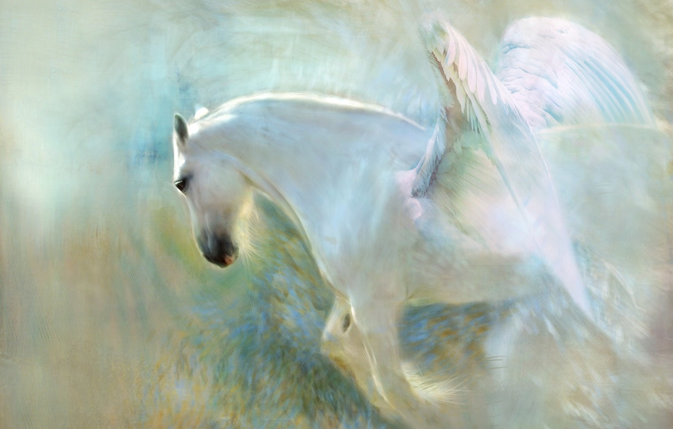 Photo wallpaper white, face, light, flight, background, horse, horse, wings, light, picture, the atmosphere, fantasy, art, painting, …