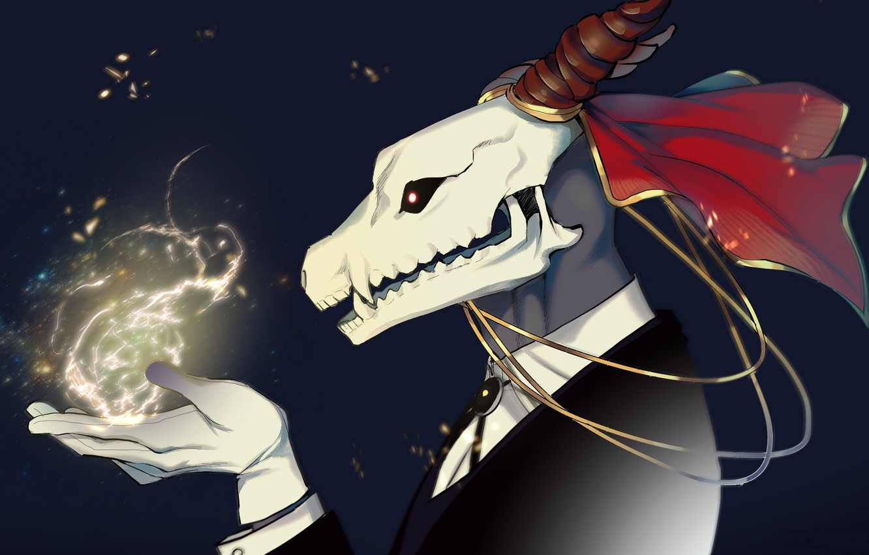Photo wallpaper magic, skull, art, fascinator, Mahou Tsukai no Yome, Bride of the sorcerer