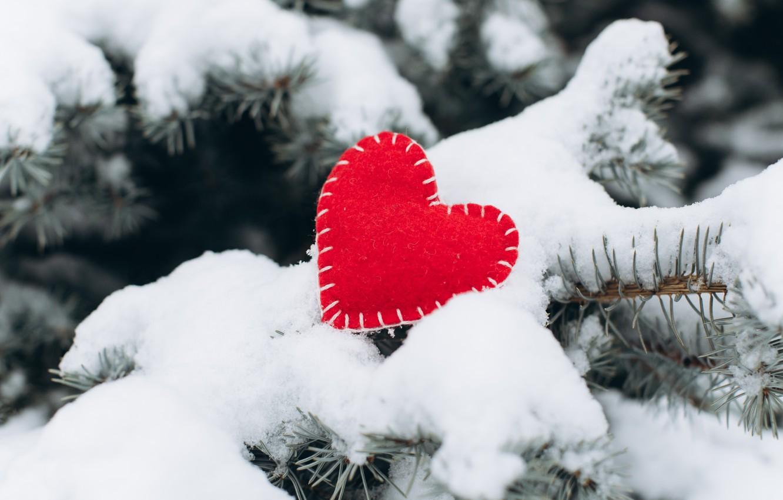 Photo wallpaper winter, snow, love, heart, tree, red, love, heart, winter, snow, romantic, valentine, fir tree