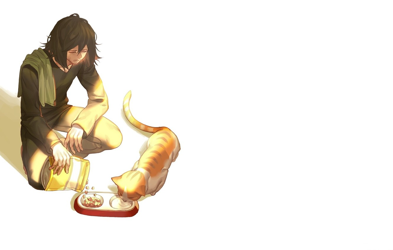 Photo wallpaper package, white background, guy, food, sad, red cat, feeder, Boku no Hero Academy