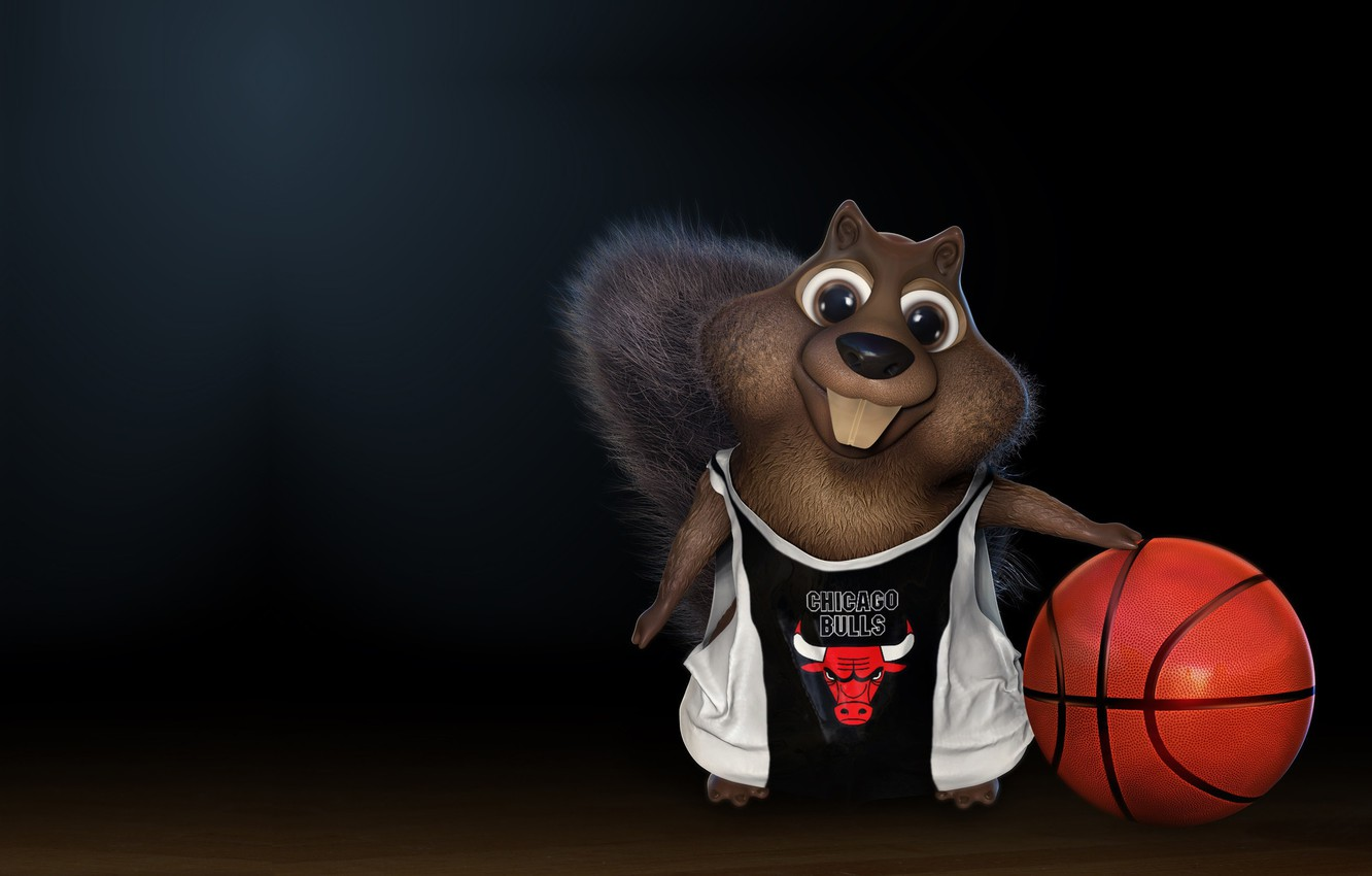 Photo wallpaper the ball, basketball, Chicago Bulls, Chicago Bulls, children's, darlon ximenes, Squirrel playing basketball!