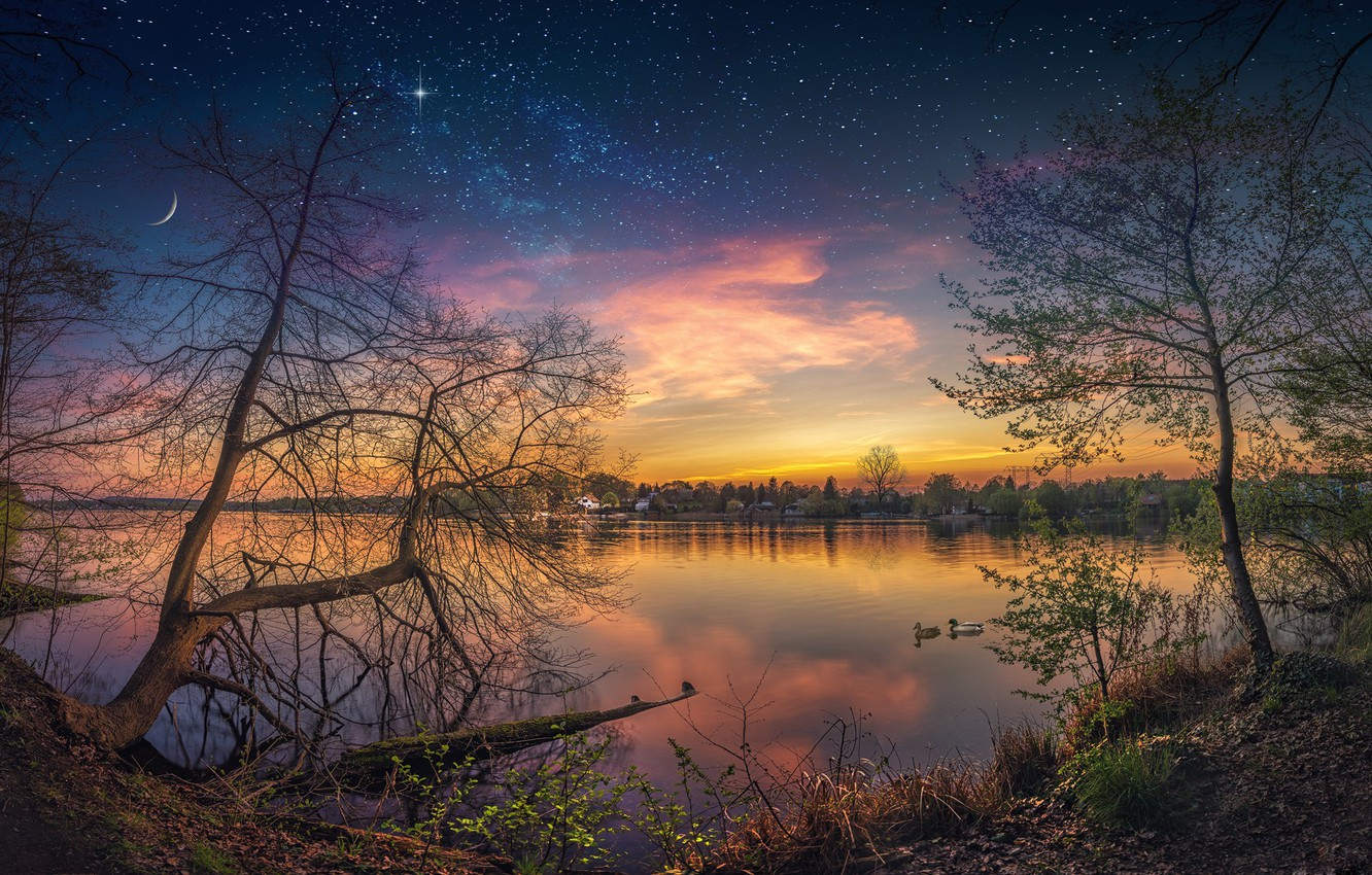 Photo wallpaper the sky, stars, trees, reflection, river