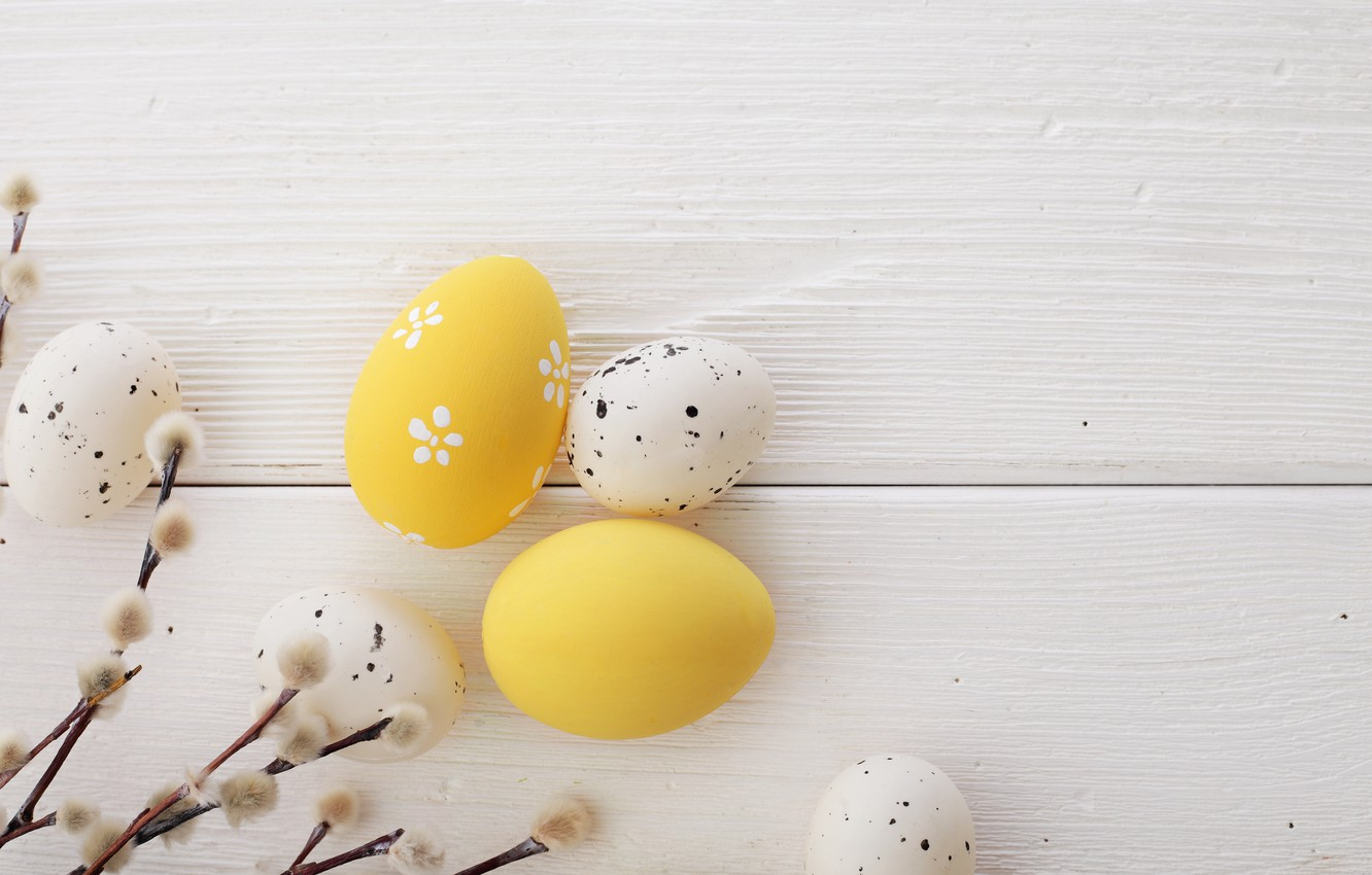 Photo wallpaper Easter, wood, Verba, spring, Easter, eggs, decoration, Happy, the painted eggs