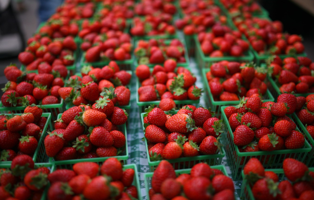 Photo wallpaper berries, strawberry, red, a lot