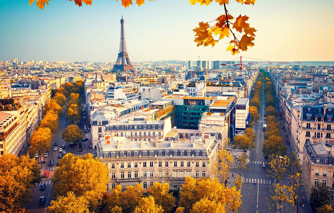 Photo wallpaper autumn, the sky, leaves, the sun, trees, branches, France, Paris, home, yellow, Eiffel tower, the ...