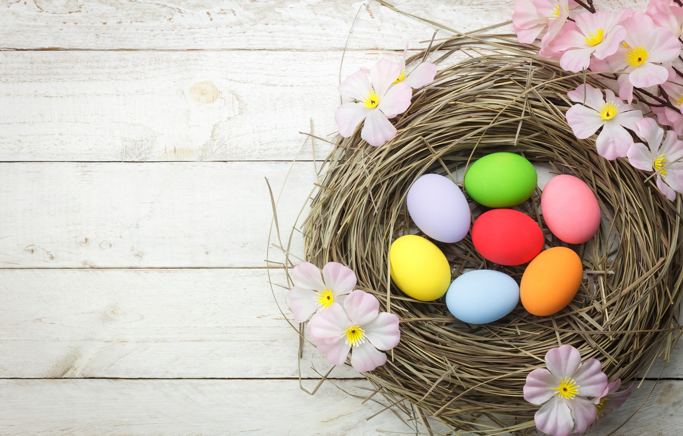 Photo wallpaper flowers, basket, eggs, spring, colorful, Easter, pink, wood, pink, blossom, flowers, spring, Easter, eggs, decoration, …