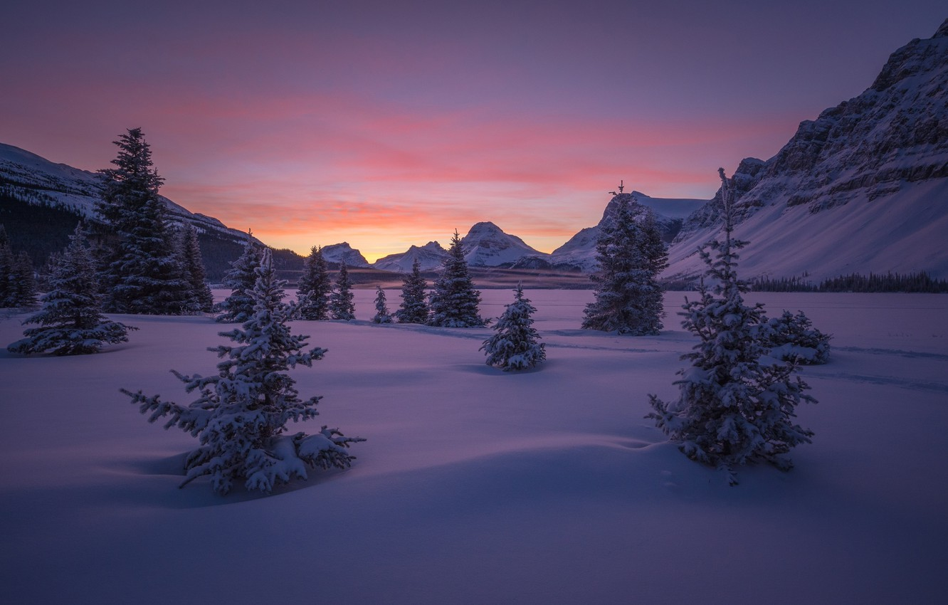 Photo wallpaper winter, forest, the sky, snow, trees, mountains, dawn, valley, Canada, Albert, Banff National Park, Banff