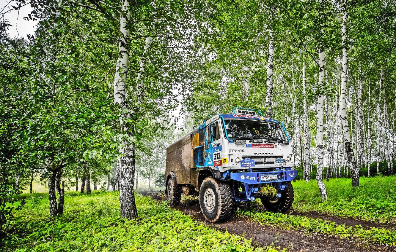 Photo wallpaper Grass, Trees, Sport, Speed, Race, Master, Dirt, Birch, Russia, Kamaz, Rally, Rally, KAMAZ, 312, Master, …