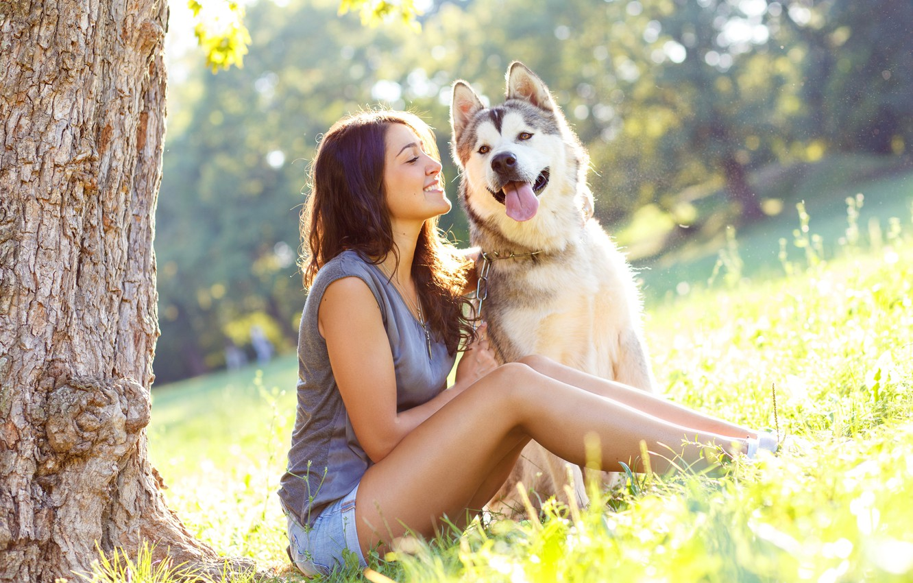 Photo wallpaper greens, language, summer, face, girl, the sun, trees, smile, shorts, dog, Mike, hairstyle, chain, brown …