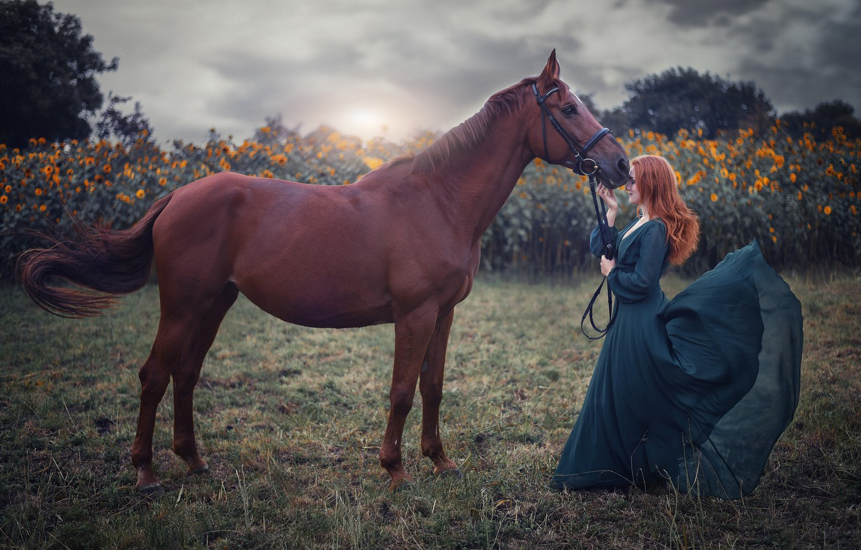 Photo wallpaper field, girl, mood, horse, dress