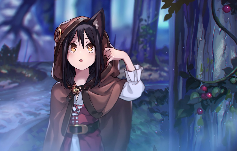 Photo wallpaper forest, girl, dark, anime, art, neko, the girl in the hoodie, neko-Chan, nekomimi