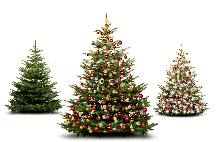 Photo wallpaper decoration, toys, New Year, Balls, Tree, tree, White Background