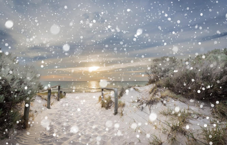 Photo wallpaper winter, sea, beach, snow, nature, dunes