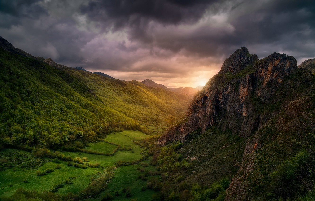 Photo wallpaper forest, the sky, clouds, light, trees, mountains, clouds, valley, forest