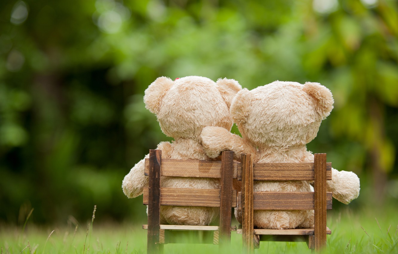 Photo wallpaper love, toy, bear, pair, love, two, bear, park, teddy