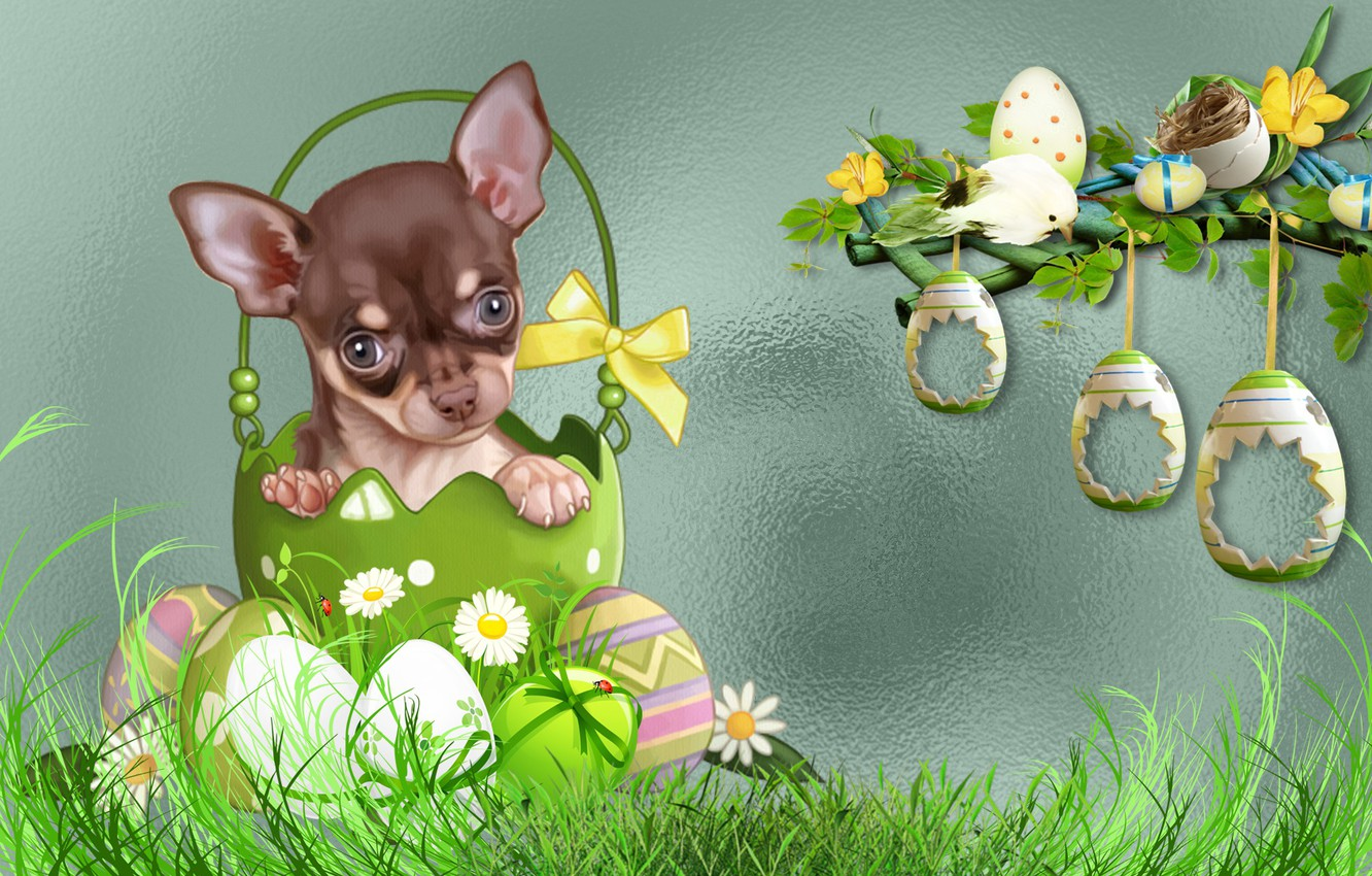 Photo wallpaper dog, MOOD, EASTER, THE WALLPAPERS