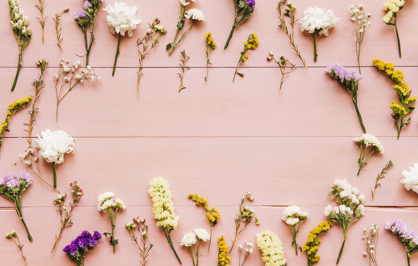 Wallpaper Flowers Background Spring Pink Flowers Background