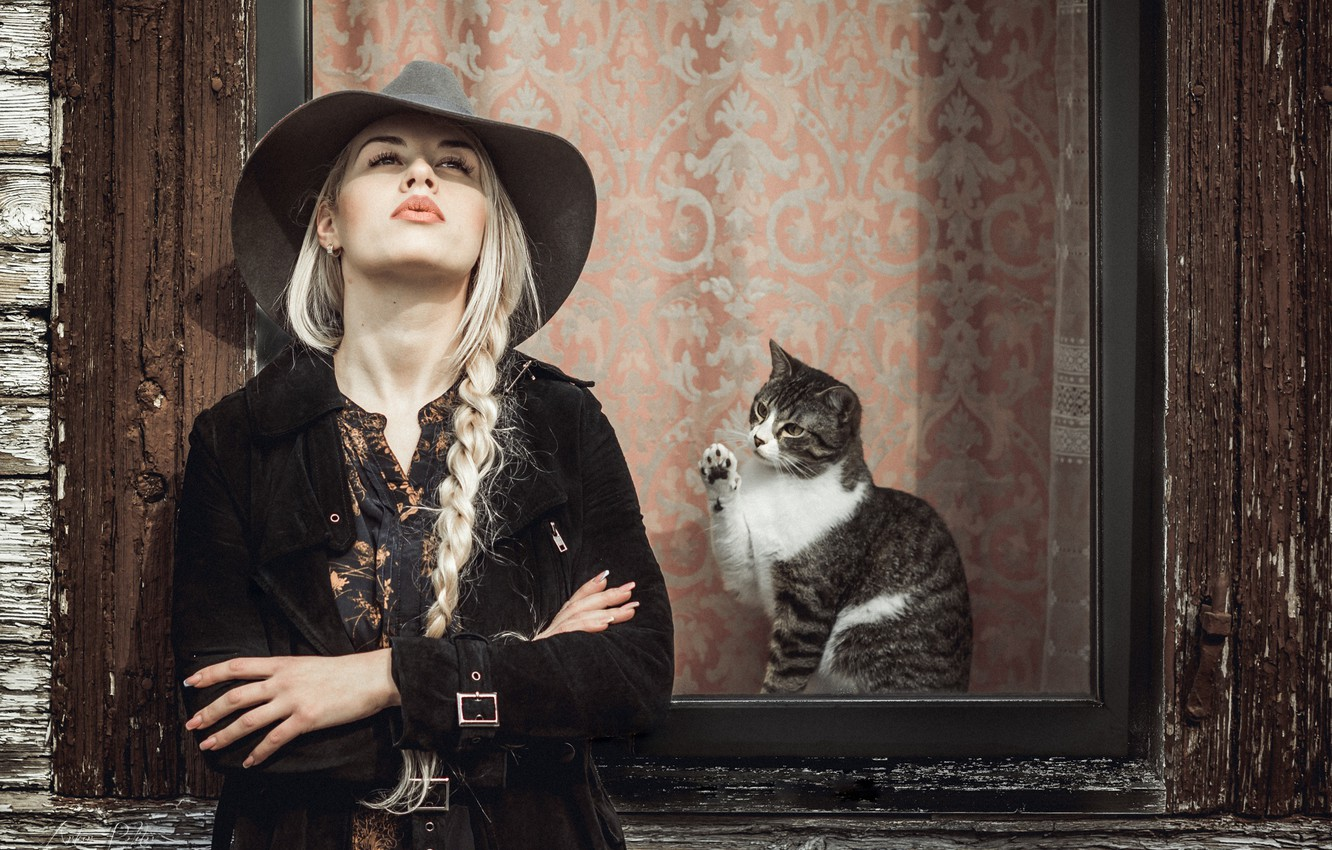 Photo wallpaper cat, girl, hat, window, braid