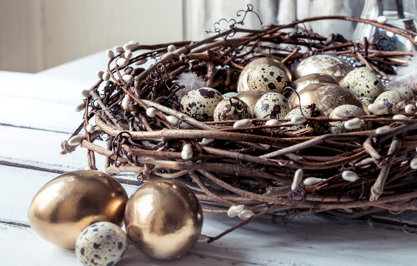 Photo wallpaper branches, spring, feathers, Easter, socket, golden, happy, Verba, spring, Easter, eggs, decoration, quail eggs, the …