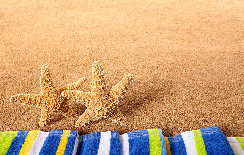 Photo wallpaper sea, beach, nature, starfish