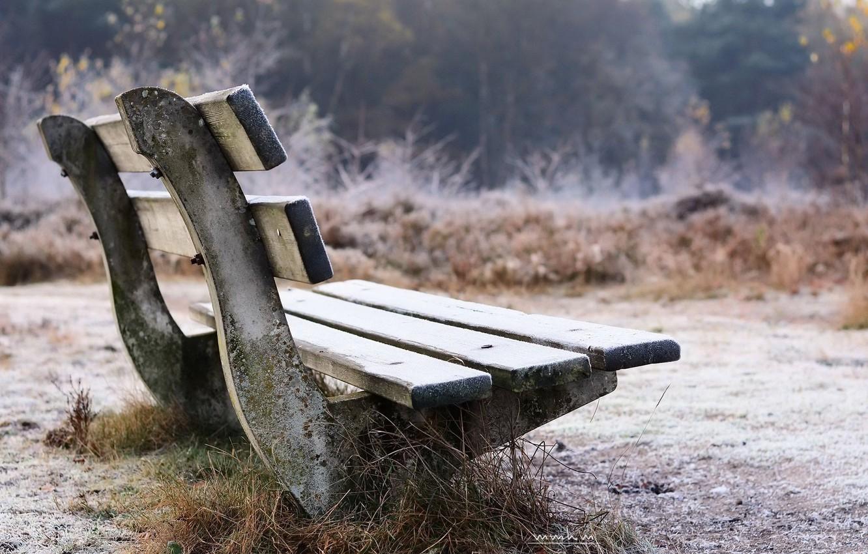 Photo wallpaper frost, autumn, bench