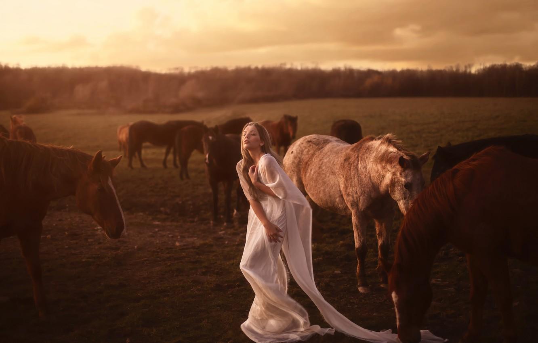 Photo wallpaper girl, horse, the herd, Aleah Michele, Seek and return