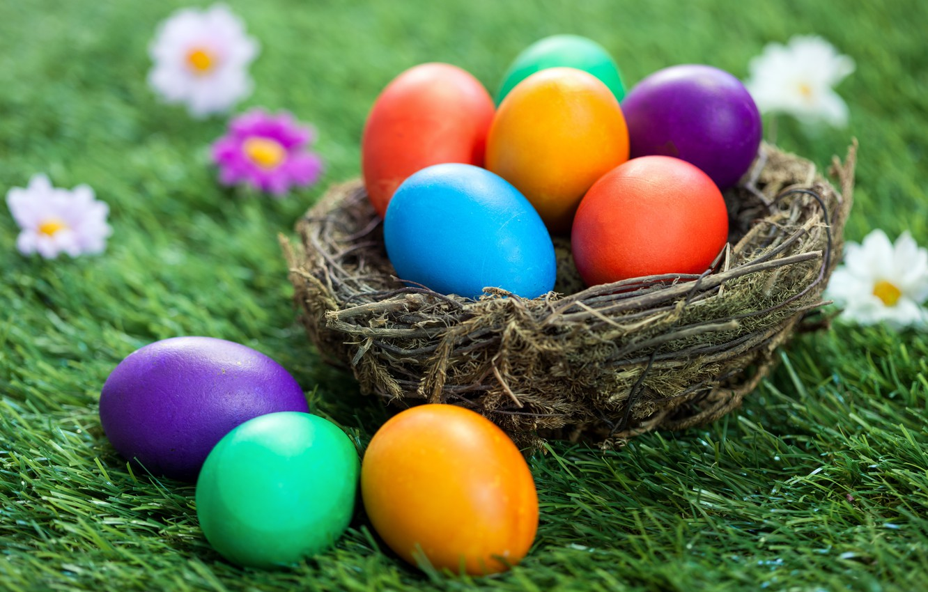 Photo wallpaper grass, flowers, basket, Easter, flowers, spring, Easter, eggs, decoration, Happy, the painted eggs