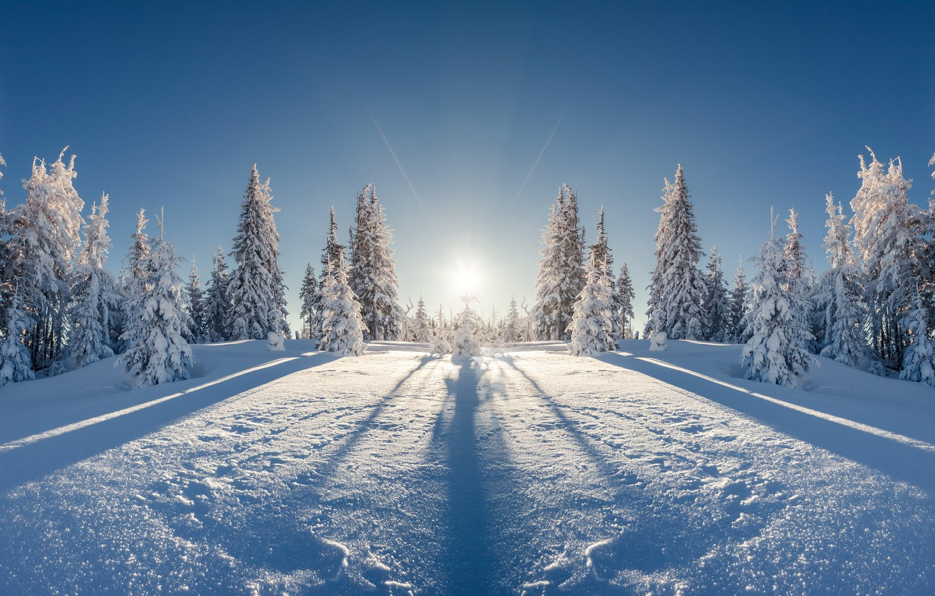 Photo wallpaper winter, field, forest, the sun, rays, snow, landscape, reflection, beauty, ate, frost, space, the snow, …