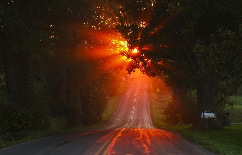 Photo wallpaper road, autumn, light, morning