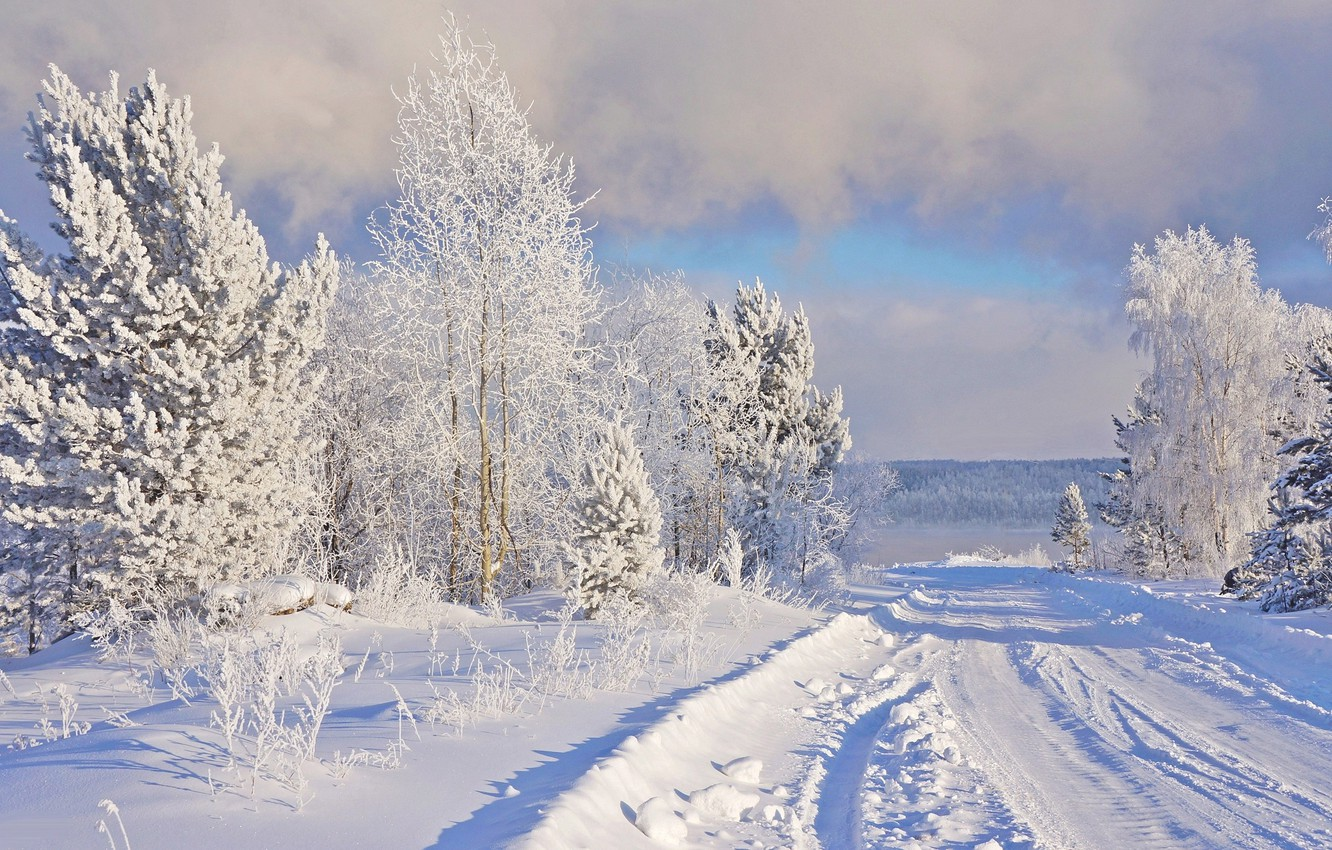 Photo wallpaper winter, frost, road, snow, nature, frost