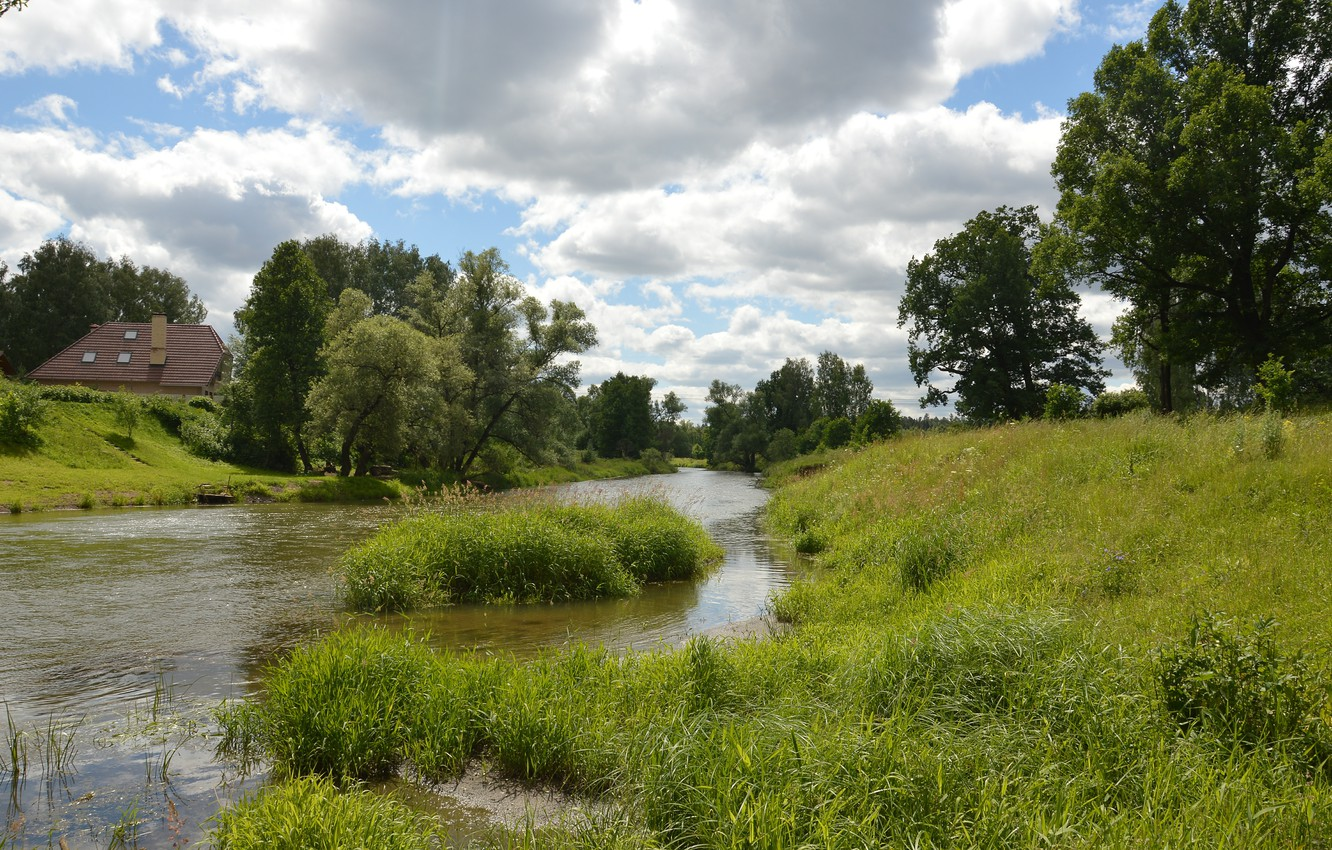 Photo wallpaper Nature, Clouds, Grass, Trees, Summer, Nature, Clouds, Grass, River, Summer, River, Trees