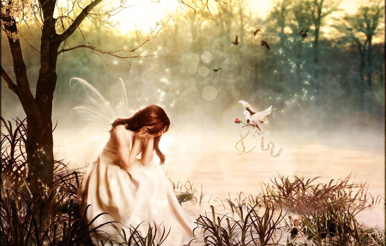 Photo wallpaper rose, dove, Digital Art, brandrificus, breakdown, magic fairy