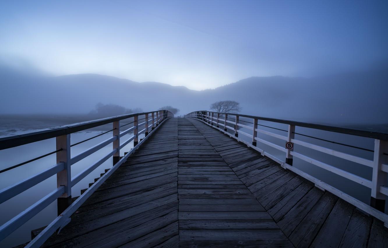 Photo wallpaper bridge, fog, lake, morning