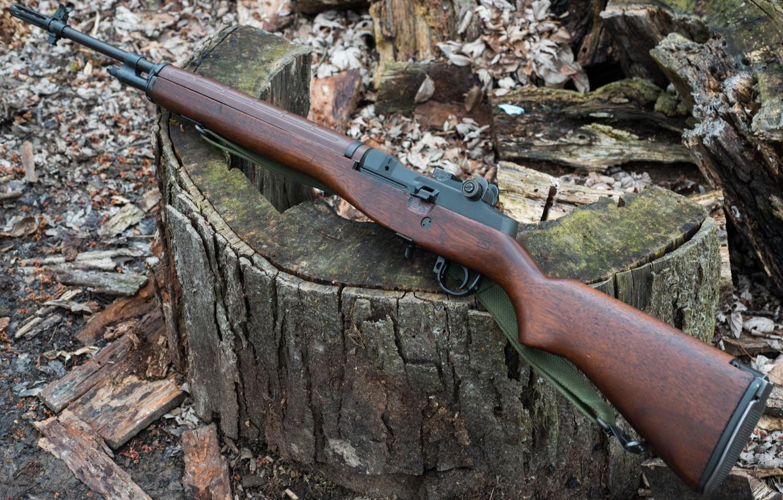 Photo wallpaper Springfield, A semi-automatic rifle, Armory M1A