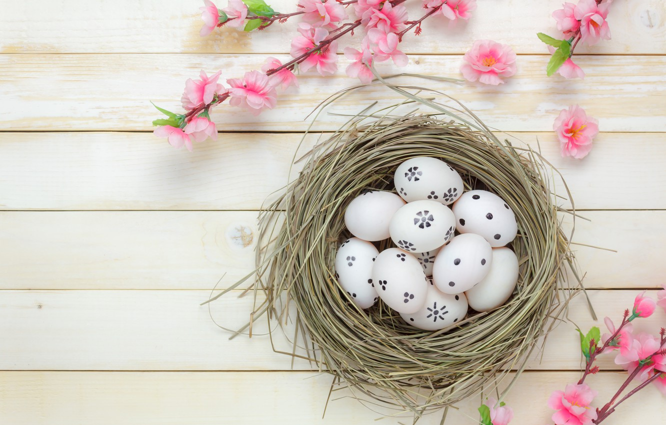 Photo wallpaper flowers, basket, eggs, spring, Easter, wood, pink, blossom, flowers, spring, Easter, eggs, decoration, Happy, tender