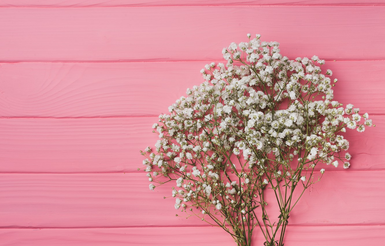 Photo wallpaper flowers, background, pink, pink, flowers, background, wooden, spring, tender, floral