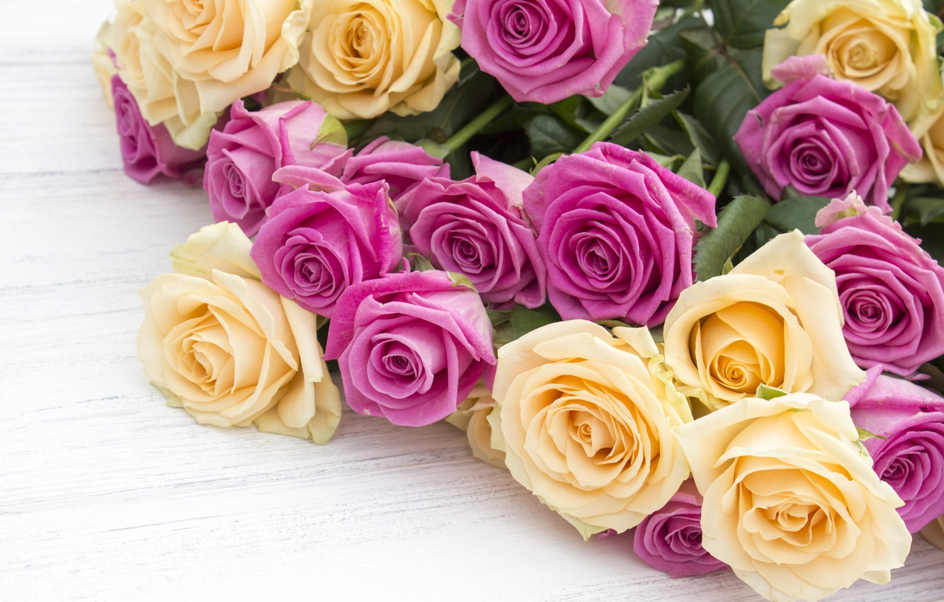 Photo wallpaper flowers, roses, bouquet, yellow, pink, buds, pink, flowers, beautiful, roses