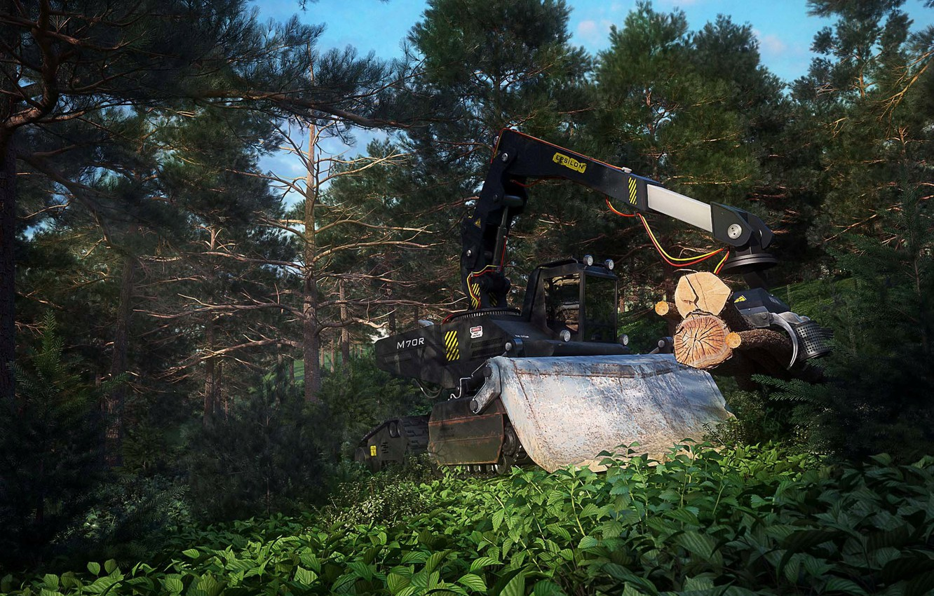 Photo wallpaper forest, tractor, cutting, Forest Vehicle