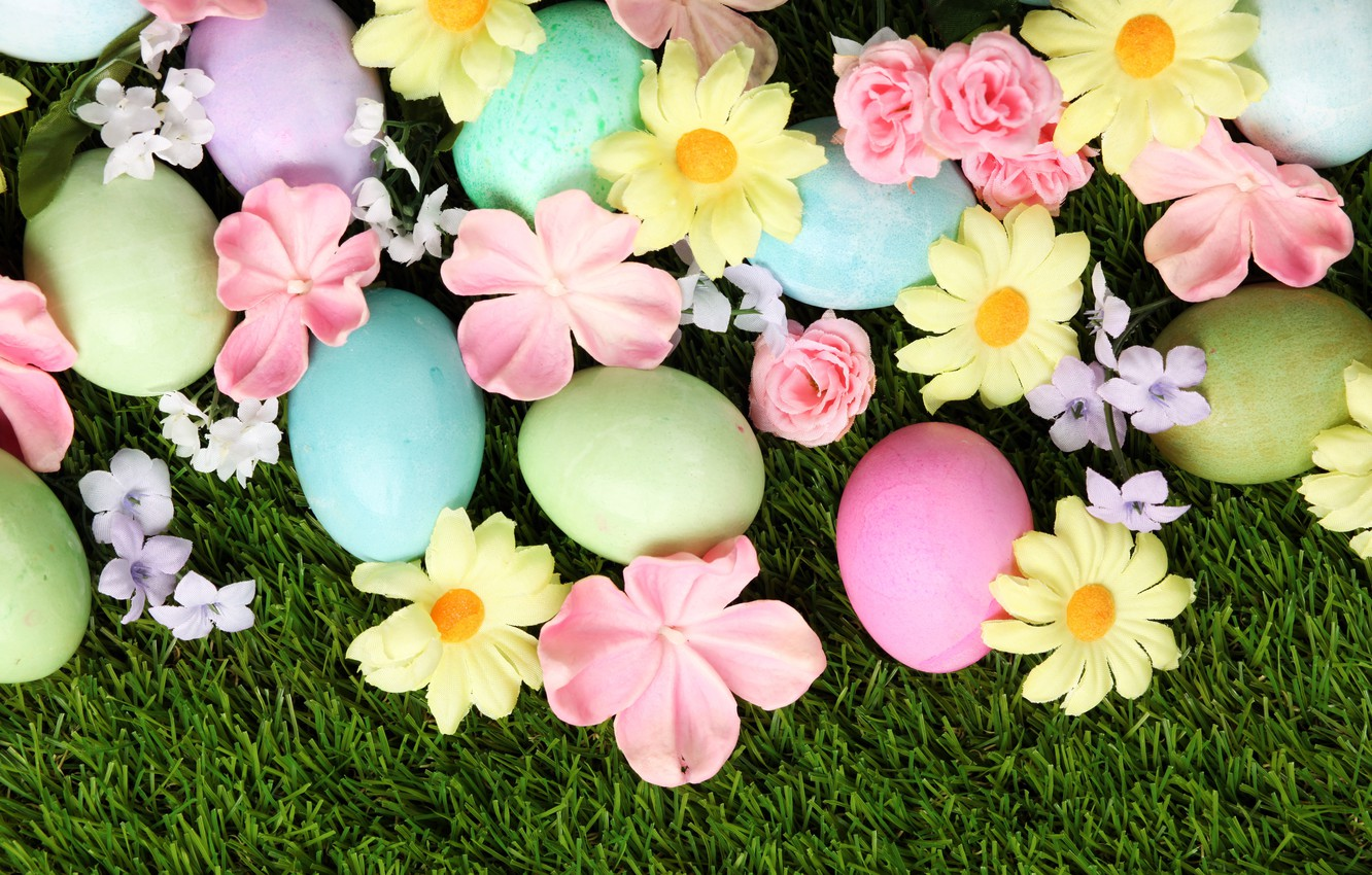 Photo wallpaper grass, flowers, Easter, flowers, spring, Easter, eggs, decoration, Happy