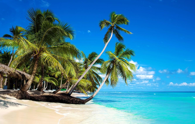 Photo wallpaper sea, beach, Tropics
