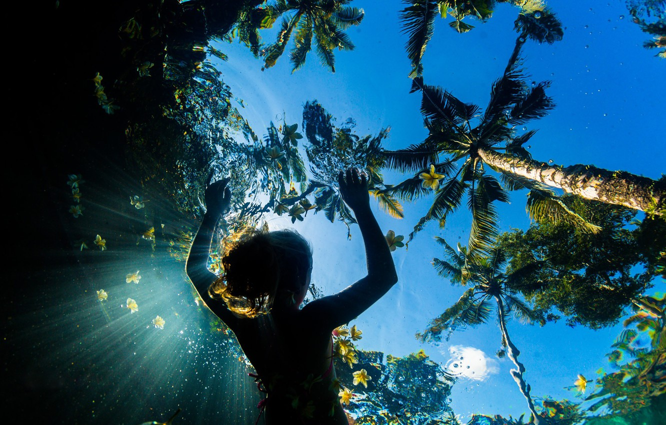 Photo wallpaper sea, summer, the sky, water, girl, light, flowers, palm trees, the ocean